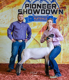 Steva Robinson Show Stock - Champions